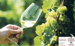 Chisinau  Wine Festival
